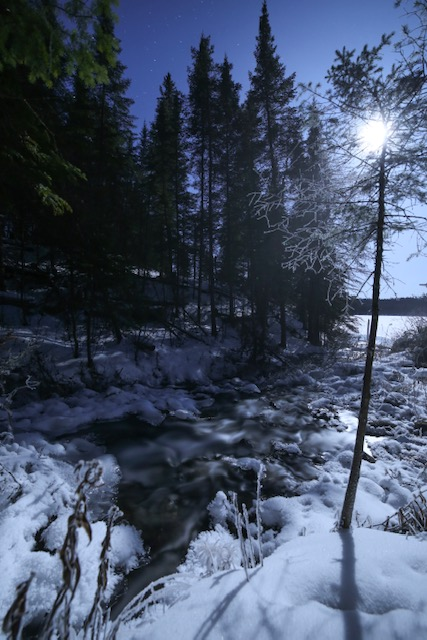 Frosty long exposure with soft water under moonlight