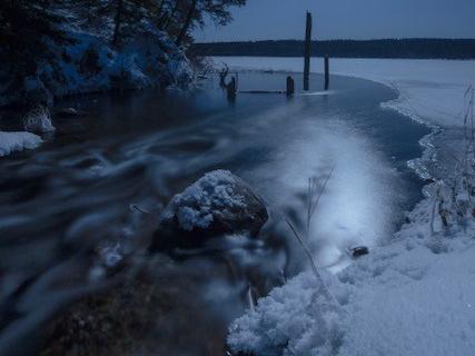 Frost under the Moonlight