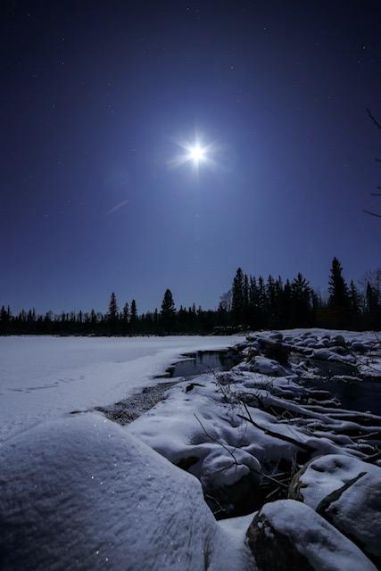 MoonStarfrost