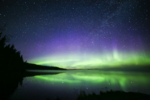 Northern lights Saskatchewan Boreal forest  Canada